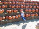2007_Sarah_Pumpkins
