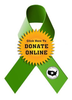2014 Donate Ribbon LDA