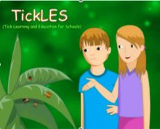 Top 10 LDA Resources To Deal With Ticks