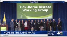 NBC News 4 NewYork featuring Tick-Borne Disease Working Group
