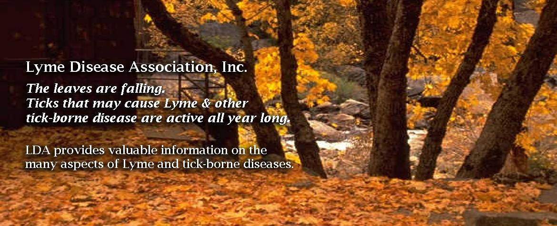 Fall Prevention Slider Fall 2019