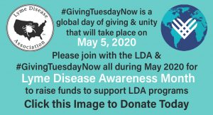 Giving Tuesday Now and LDA