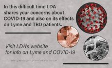 Info on Lyme and Covid-19