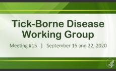 15th_Meeting_2020-09-15 (83)