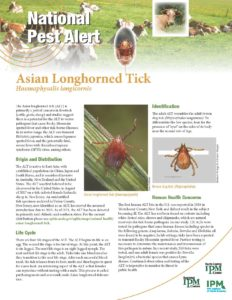 Asian Longhorned Tick Alert
