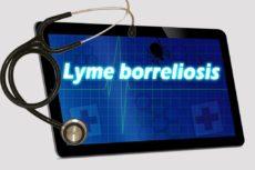 lyme-disease-4669319_1920